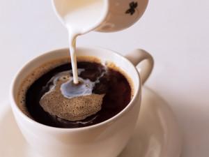 cafe-com-leite-1a56b